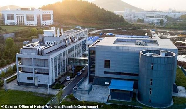 Coronavirus Chine Wuhan Institute of Virology